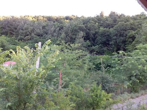 باغ ویلا جنگلی سام ماسال