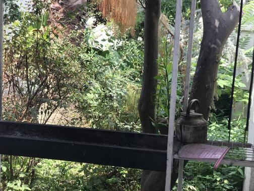 ویلا استخردار شیک دو خواب دربست ( کازینو )