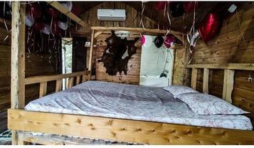 کلبه چوبی VIP انار