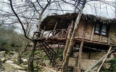 کلبه چوبی کمپی درختی