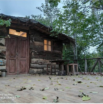 کلبه چوبی VIPصنوبر