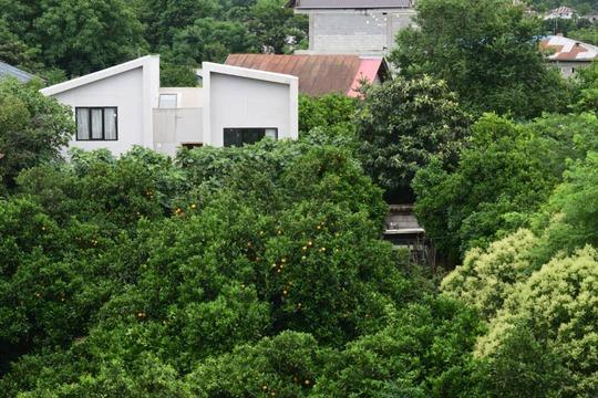 ویلا باغ با استخر سرپوشیده (رامسر )